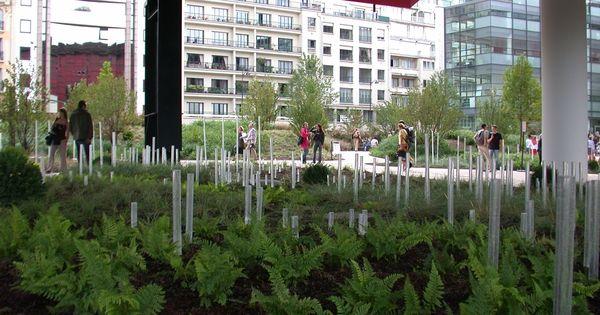 Jardin du quai branly g cl ment 2006 gr ce la for Jardin quai branly