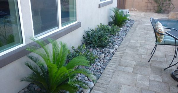 River rock landscaping indian hawthorne smooth agave w for Smooth river rocks for landscaping