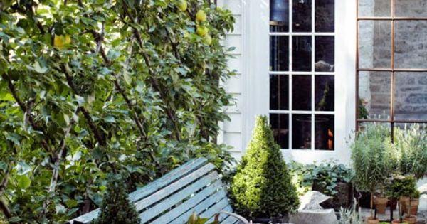 Designer Jeannette Whitson S Espaliered Pear Belgian Fence