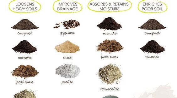 Learn how to classify the type of soil in your yard what for Types of soil and its uses
