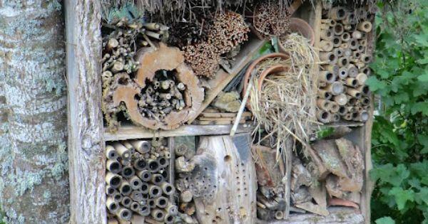 h tel pour insectes jardin et am nagement ext rieur pinterest jardins maison et h tel des. Black Bedroom Furniture Sets. Home Design Ideas