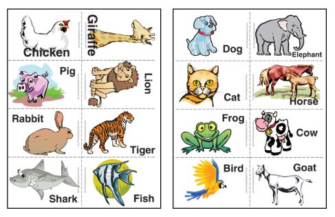 Free Printable Animal Flash Cards Printable Flash Cards Animal Flashcards Alphabet Flash Cards Printable
