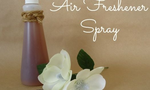 DIY VANILLA AIR FRESHENER SPRAY You will need: 1 Cup Water 3