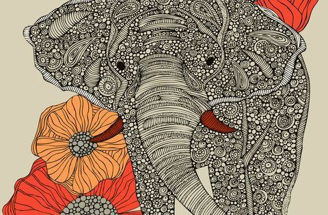 Elephant and Flower Line Drawing.