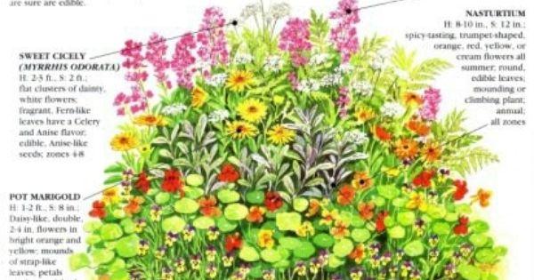 Garden gardens of wisdom and knowledge pinterest gardens