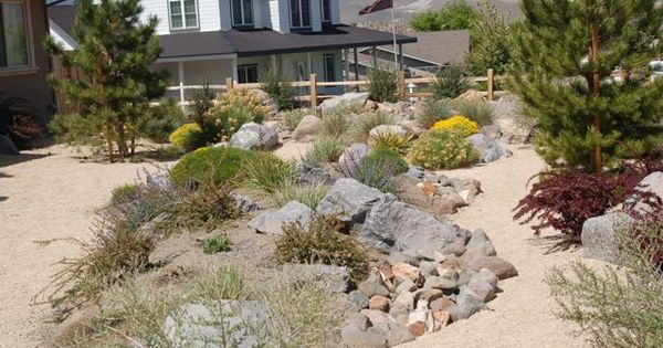 Xeriscape Nevada In The Dirt Pinterest Yard Ideas