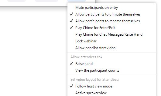 Zoom Panelist Webinar In 2020 Webinar Video Setting Changing Your Name