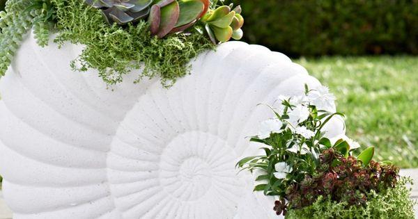 Nautilus planter nautilus planters and garden oasis for Nautilus garden designs