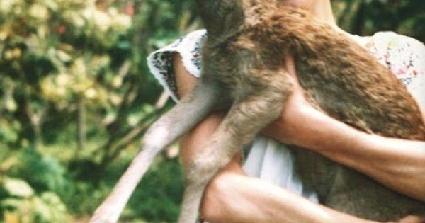 Audrey Hepburn & her pet fawn Pippin Audrey Hepburn Princess icon legend