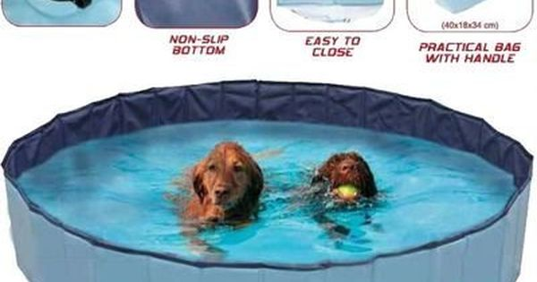 Croci Dog Swimming Pool Explorer 120 X 30 Cm In 2020 Dog Swimming Pools Dog Pool Dog Accesories