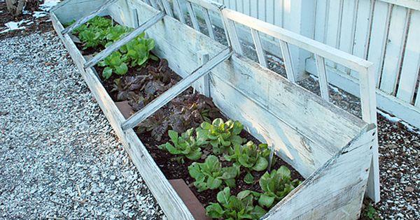 Williamsburg S Colonial Garden And Nursery Thephotogardenbee Colonial Garden Cold Frame Gardening Garden Planning