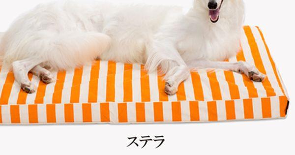 犬 猫の日本製高級ベッド アンベルソ 公式サイト アンベルソのペットベッドは 大切なペットに至福の癒しと眠りを届けます 上質で高機能なプレミアムベッド ロイヤルベッドをぜひお試しください 小型犬から大型犬サイズまで取り揃えています