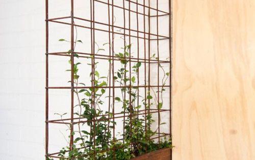 Vertical garden lovely plants pinterest jardins for Ikea barso trellis