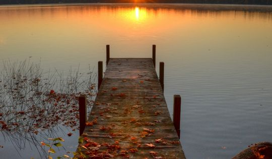 Autumn Leaves Fall Colour Sunset by the Dock.... T out a ...