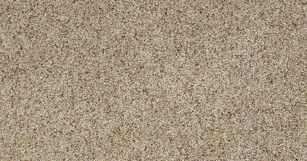 Carpet Flooring HGTV Home Flooring By Shaw Timeless