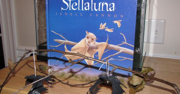 stellaluna literacy basket idea