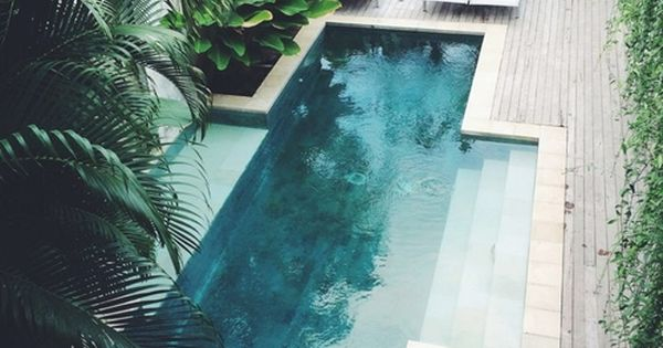 Pool amongst a green oasis