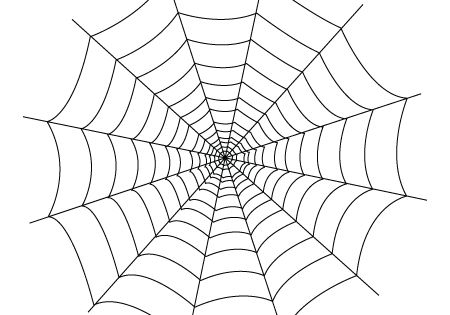 spider web You will find down
