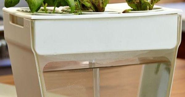 Aquafarm self cleaning fish tank that grows food want for Avo fish tank