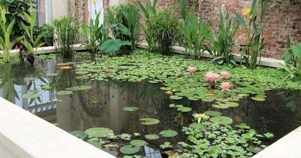 Arte y jardiner a dise o de jardines estanques acu ticos for Estanques y jardines acuaticos