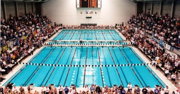 Ssc World Class Venues Seattle Sports Commission Seattle Sports Diving Springboard Swimming Pools