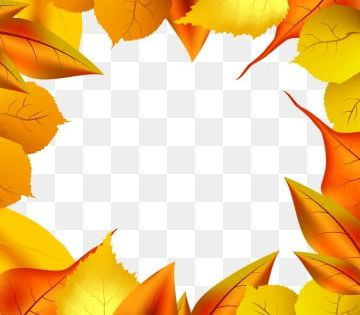 Simple And Autumn Frame With Dry Leaves Autumn Leaf Branch Png And Vector With Transparent Background For Free Download In 2021 Leaf Drawing Maple Leaf Drawing Leaf Images