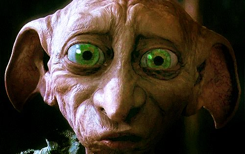 Photo Of Dobby For Fans Of Dobby The House Elf Harry Potter Creatures Harry Potter Fantastic Beasts Harry Potter