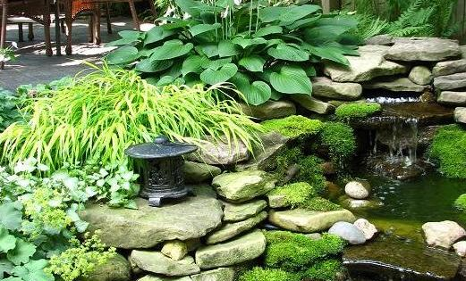 a small pond with waterfall in backyard!!! Have a spot for this.
