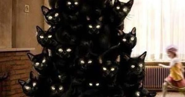 Christmas Tree Made Of Black Cats