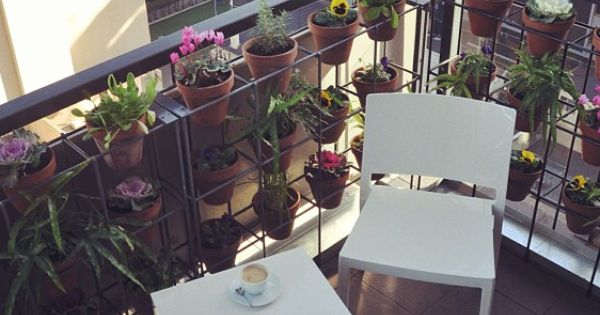Plantenrek voor verticaal tuinieren gemaakt van staaldraad en terracotta bloempotten - Outdoor tuinieren ...