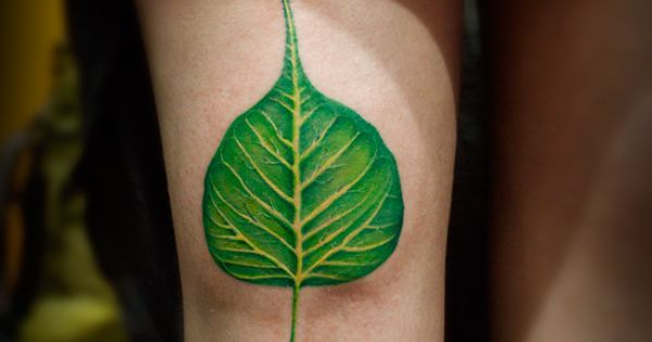 banyan tree leaf tattoo inked by sunny at aliens tattoo mumbai client traveled from canada to. Black Bedroom Furniture Sets. Home Design Ideas