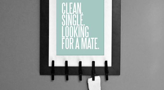 Clean. Single. Looking For a Mate. Fun Laundry Room Art helping socks