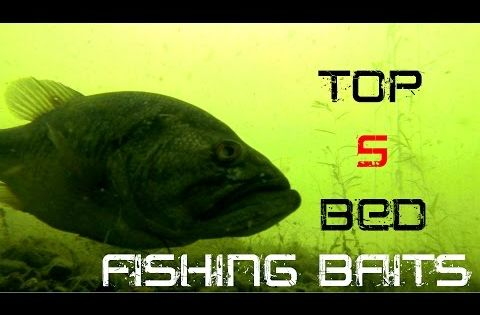 Top 5 baits for bed fishing tackle grab bass fishing for Bed fishing for bass