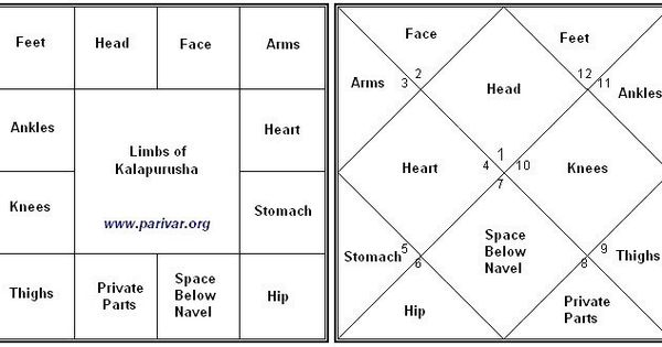 South And North Indian Chart Styles And House Bhava Association With Anatomy Birth Chart Astrology Jyotish Astrology Astrology Chart