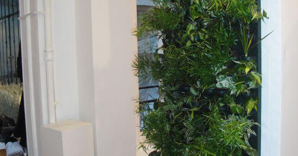 Mur v g tal flowall avec plantes d 39 int rieur dans for Arbre d interieur appartement