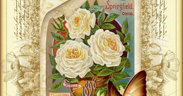 vintage flower instant download vintage seed packet