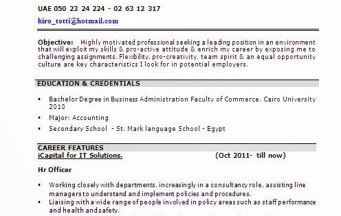 beautiful resume design Sample Template Example ofExcellent - what are my career objectives