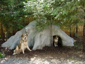 The Dog Cave House Dog Cave Cool Dog Houses Custom Dog Houses