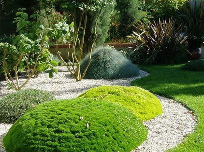 Landscaping With Irish Moss : Eclectic landscape by graham stanley and associates inc