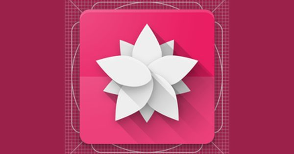 Anemone Icon App Icon Design Simple Logo Design App Icon