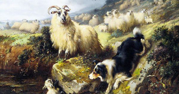 BORDER COLLIE AND LAMB LOVELY OLD STYLE DOG ART PRINT READY MATTED