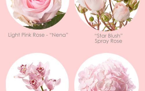 Our Favorite: Light Pink Flowers - Flower Muse Blog