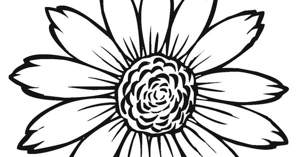 Sunflower Coloring Pages The Sunflower Is Yellow