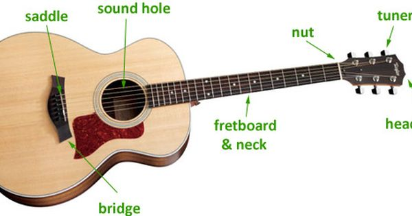 Parts Of The Guitar Guitar Guitar For Beginners Acoustic Guitar Parts