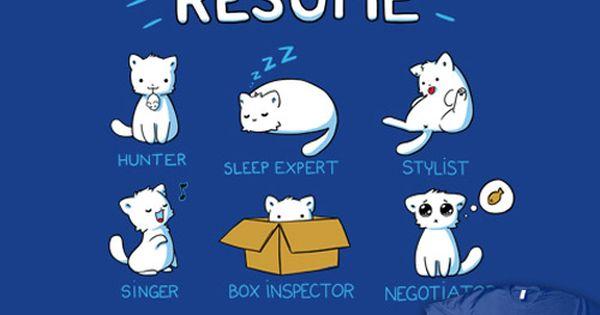 cat s resume pets cat animal and cat