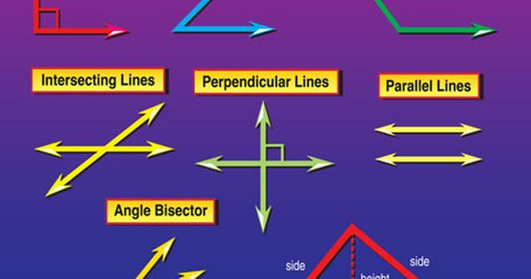 Modern Classroom Teaching Learning Resources ~ Names of lines and angles protracor a tool used to