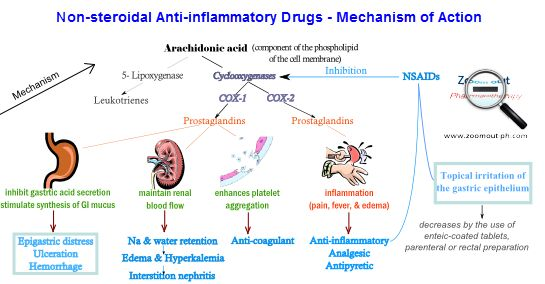 Mechanism Of Action Of Non Steroidal Anti Inflammatory