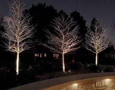 Conseils De Pro Pour Positionner Votre Eclairage Exterieur Eclairage De Jardin Eclairage Exterieur Amenagement Jardin