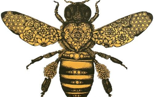 .Love this gorgeous illustration celebrating the honeybee!