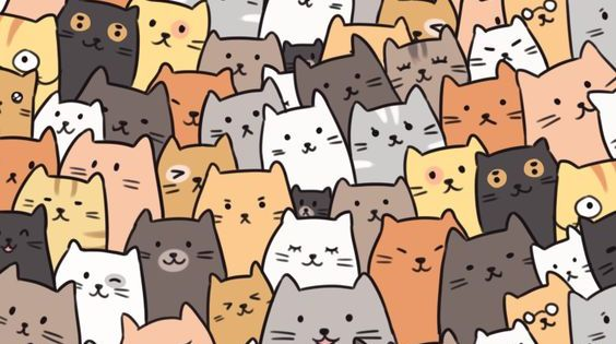 35 Cute Funny Cat Iphone Wallpaper Backgrounds Free Download Cat Phone Wallpaper Cat Pattern Wallpaper Iphone Wallpaper Cat